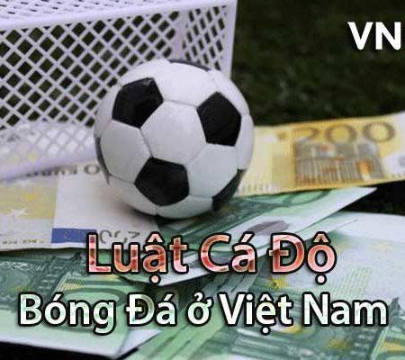 Khám phá luật cá độ bóng đá ở Việt Nam dành cho người mới